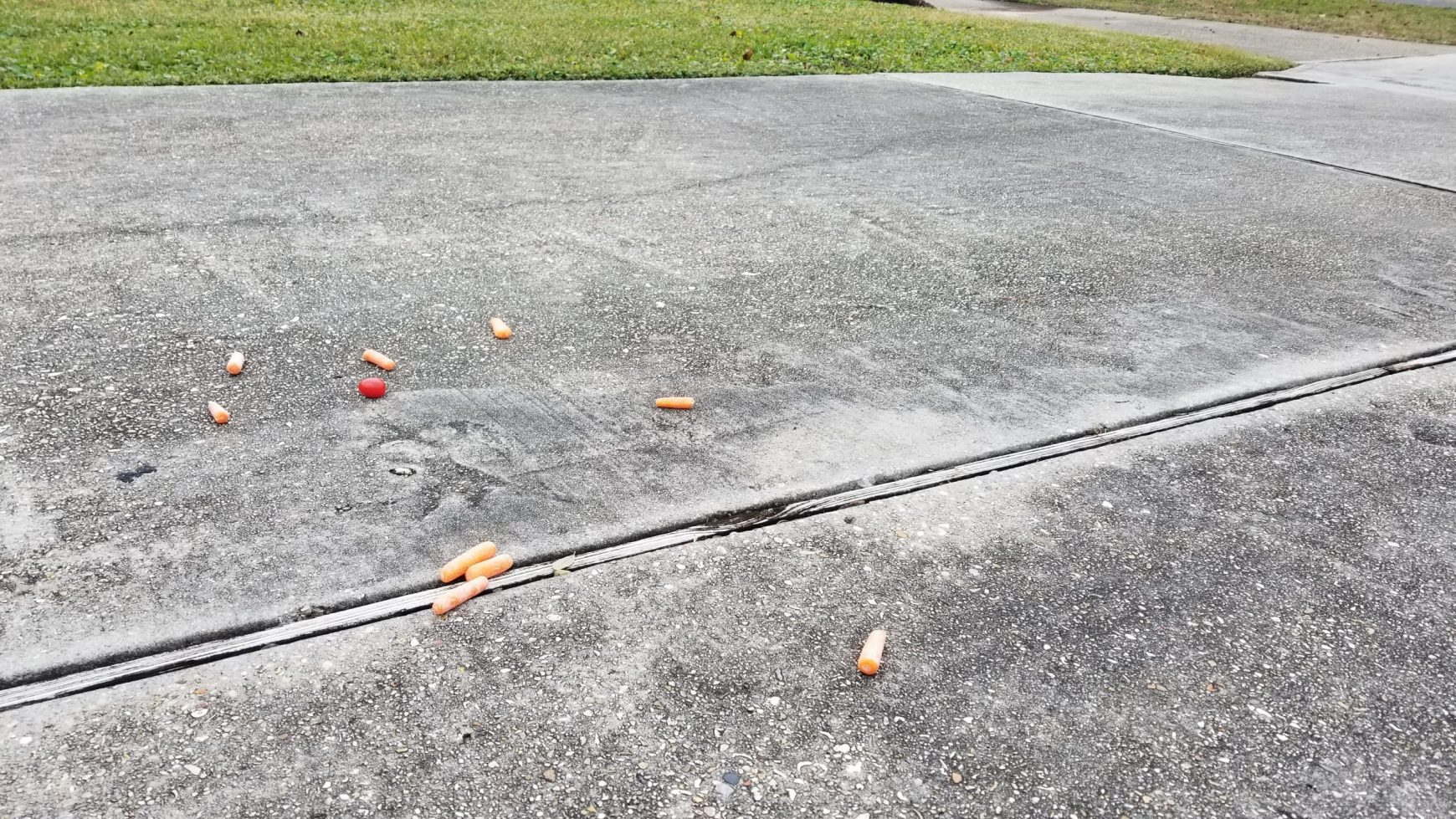 After the Show PODCAST:  Carrots in the Driveway